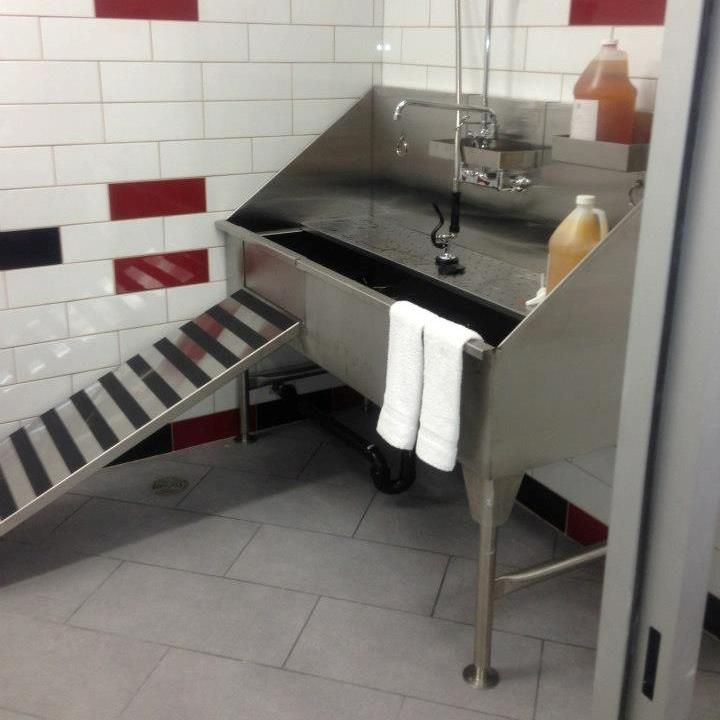 11 best dog grooming sinks images on pinterest bathroom sinks dog stainless steel dog grooming sinks for your pet solutioingenieria Images