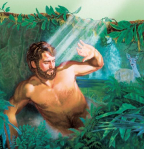 God Made Eve From Adam S Rib Quote: Adam JW Www.jw.org