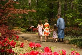 Home Of Texas' Largest Azalea Garden Mize Garden