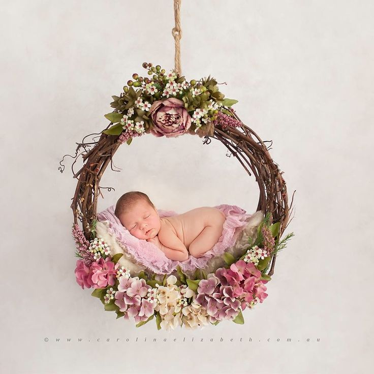 Image of Beautiful, Pacific Northwest, Uniquely Hand Crafted, Newborn Grape Vine Hammock or Dream Catcher