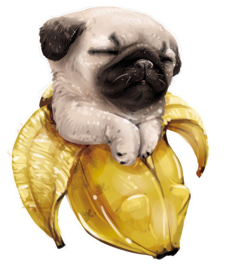 cute pugs art