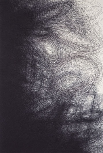 ball point pen drawing. lovely textures. not something you can recreate with a computer. IL LEE