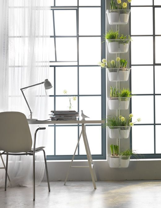 Got garden dreams but only a small apartment? Try extending your windowsill using the space in between windows to plant.