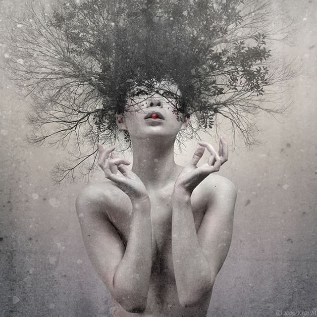 """""""I felt that I was not, never had been and never would be a living part of this overpoweringly solid and deeply #meaningful #world around me."""" ― John Knowles ❇  Murakami  #surreal #surrealart #surrealism #art #creativity #blackandwhite #dark #tree #life #woman #breathtaking #beauty"""