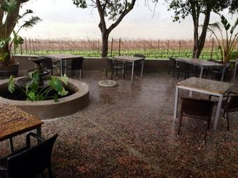 Some great pics of the hail on the estate a moment ago! Time for some red wine. 25 July 2014.