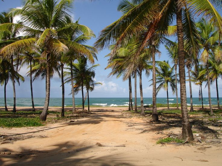 Porto de Galinhas:   17 Stunning Places In Brazil You Need To See Before You Die