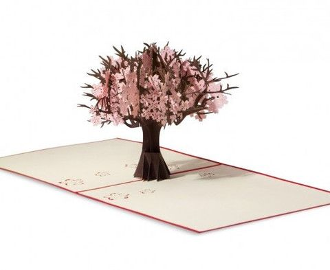 LovePop 3D Greeting Card - Cherry Blossom