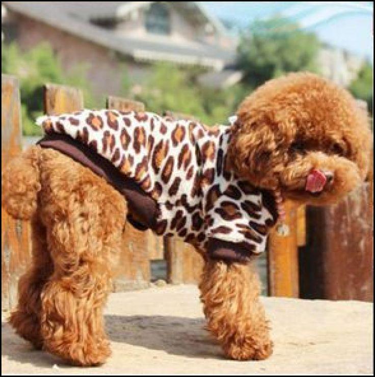 KAHVE LEOPAR DESENLİ KÖPEK KAZAĞI köpek minderi köpek yatakları köpek yatağı petshop köpek malzemeleri kopek kıyafetlerı köpek kıyafetleri kopek elbıselerı köpek elbiseleri kopek elbise köpek elbise dog clothes köpek modası kopek modası dog fashıon köpek için kıyafet kopek ıcın elbise köpek için elbise köpek paltosu köpek montu köpek ceketi köpek tişörtü KÖPEK KIYAFETİ KÖPEK ELBİSESİ KÖPEK ÜRÜNLERİ KÖPEK ÜRÜNÜ KÖPEK GİYİM www.kemique.com