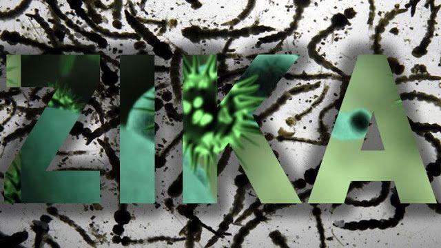 """Científicos: El zika puede hacer a la humanidad retroceder dos millones de años   Los daños genéticos causados por el virus del Zika pueden revertir la evolución humana dos millones de años advierten los científicos.  Las mutaciones genéticas provocadas por el patógeno letal amenazan con tener consecuencias permanentes en el ADN humano advierte un trabajo publicado en la revista 'Journal of Astrobiology and Outreach'. En él se afirma que el virus del Zika amenaza con provocar """"una regresión…"""