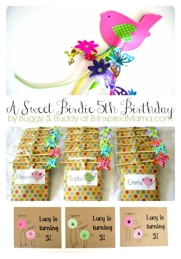 A Sweet Bird Theme Kids Birthday Party