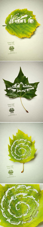 Campagne publicitaire pour « Plant for the Planet », Legas Delaney