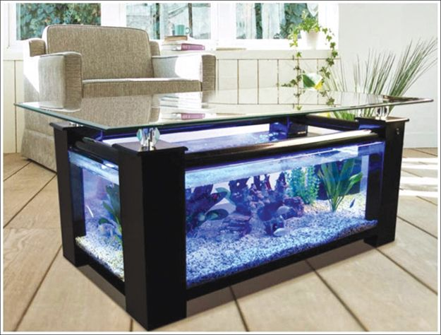 Build your own aquarium (Fish Tank) with your kids following the instructions. It's fun and productive. Here is a step-by-step procedure from Crafts for Kids, for making the perfect aquarium for your living room.