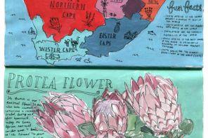 Greetings from South Africa- a Sketchbook by Mieke van der Merwe