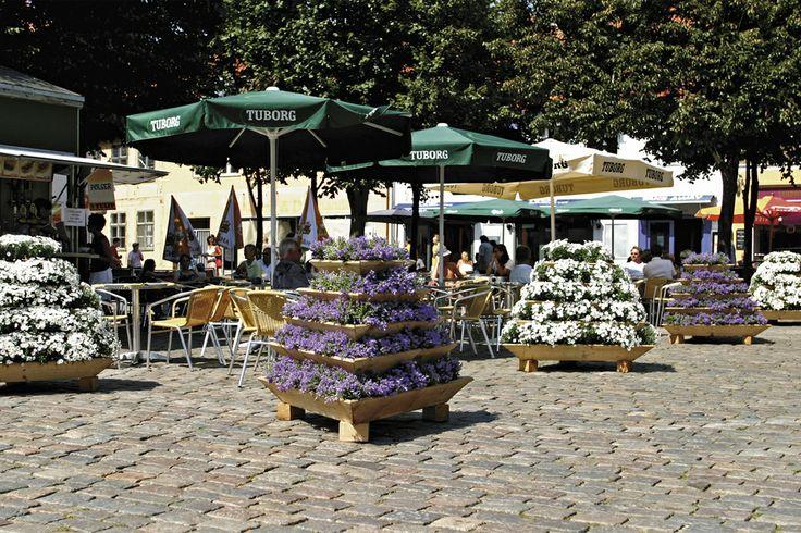 A beautiful arrangement of flowers in Europe!