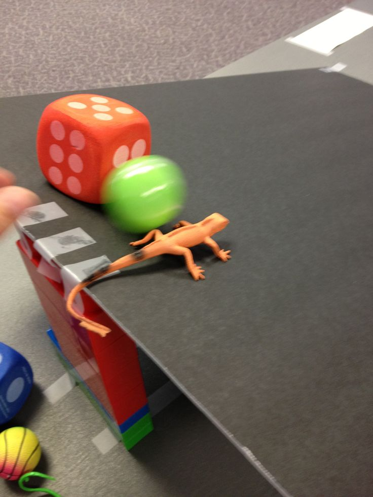 Gravity Science: A STEM Program for Preschoolers