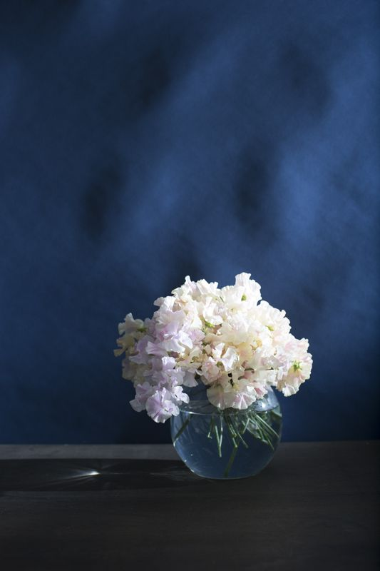 Our new flower range is live and kicking.  Check it out at www.sorrythanksiloveyou.com/flowers