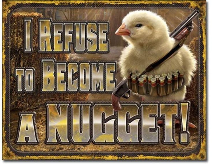Chicken Nugget Quotes: Best 25+ Funny Farm Ideas On Pinterest