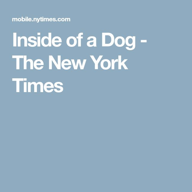 Inside of a Dog - The New York Times
