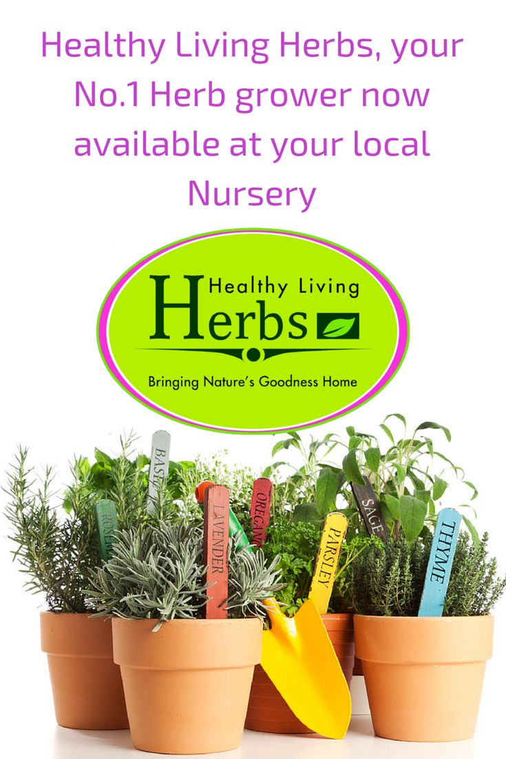 Healthy Living Herbs, your No.1 Herb grower. Available at your local Nursery.