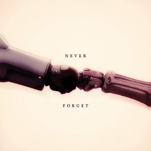 """Never forget"" Fullmetal Alchemist Brotherhood"