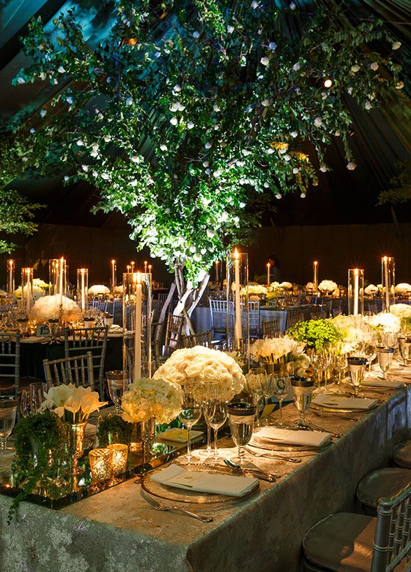 Guests sat beneath dozens of life-sized hand-crafted trees to give them the feeling that they were truly celebrating under the stars.