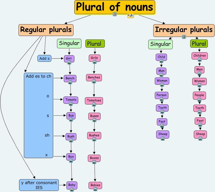 35 best Singular & Plural images on Pinterest | English language ...
