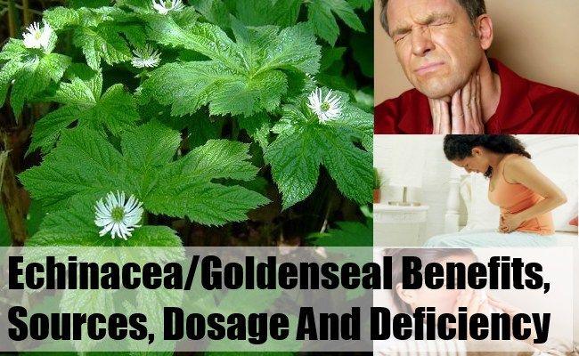 how to take goldenseal powder