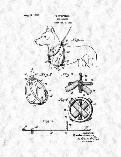 Dog Harness Patent Print Art Poster Gunmetal Grey 8 5 X 11