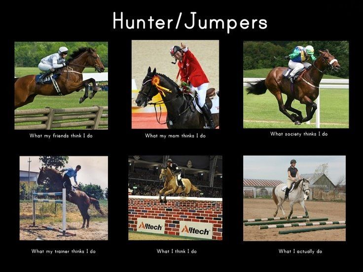 Hunter / Jumpers