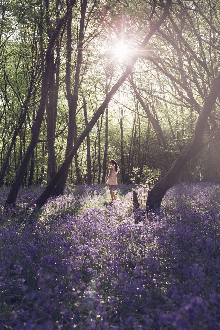 Girl in the Lens | Bluebell Woods