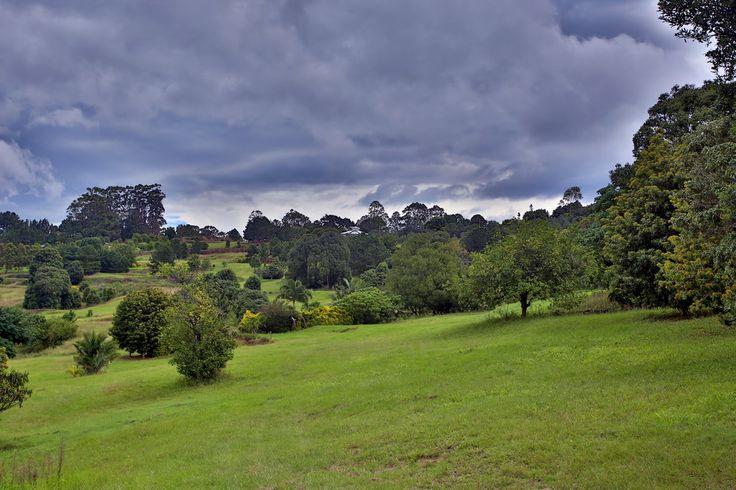 Extensive grounds for wedding photos and nature walks at Summergrove Estate www.summergrove.com.au