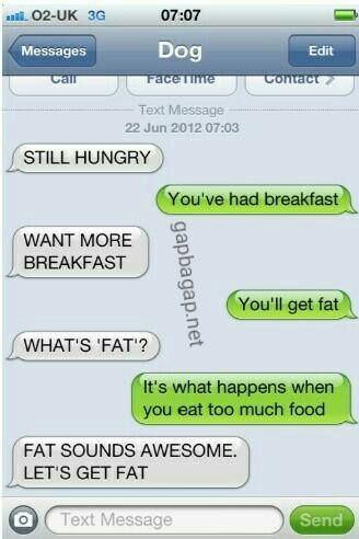 Hilarious Text Message About A Hungry Dog