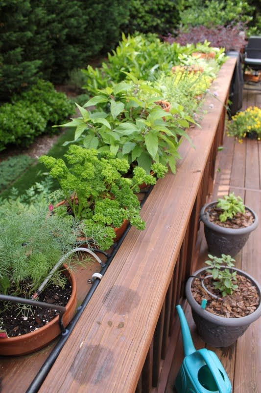 How to have Endless Fresh Herbs & Beautiful Plants on Your Deck, Patio or Porch Without ENDLESS Watering!! - thecafesucrefarine.com