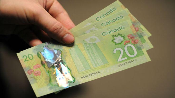 Kanada: feltétel nélküli ingyenlóvé - http://hjb.hu/kanada-feltetel-nelkuli-ingyenlove.html/