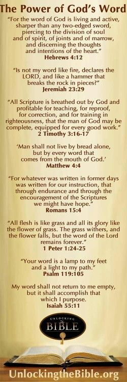 The Power of God's Word: Please refer to the BIBLE VERSES provided.