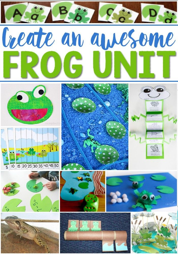 Create an awesome frog life cycle unit for your students with these great kids' activities! Math, science, sensory, literacy and more! So many fun frog theme ideas!