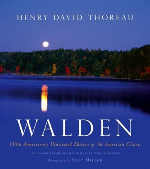 Thoreau Walden Essay Questions  Business Plan Writers In Ri also Custom Book Reviews  Thesis Statement Persuasive Essay