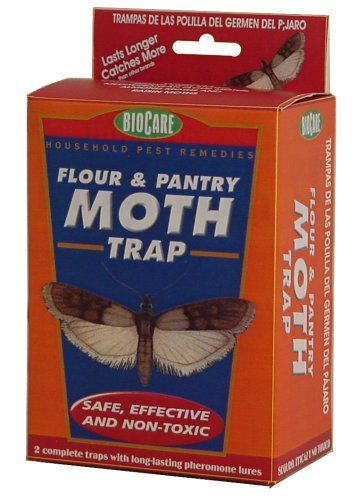 Pantry Moths In Cat Food