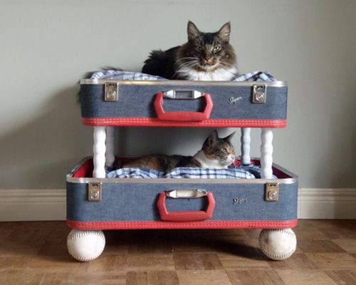 Eco-friendly beds for seriously pampered pets. Love the suitcase cat bunk beds. There's also an amazing dog bed made from an old wine barrel.