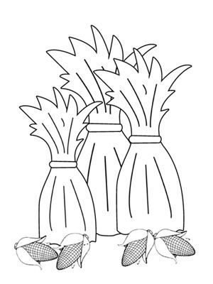 Corn stalks coloring pages and thanksgiving coloring for Corn stalk template