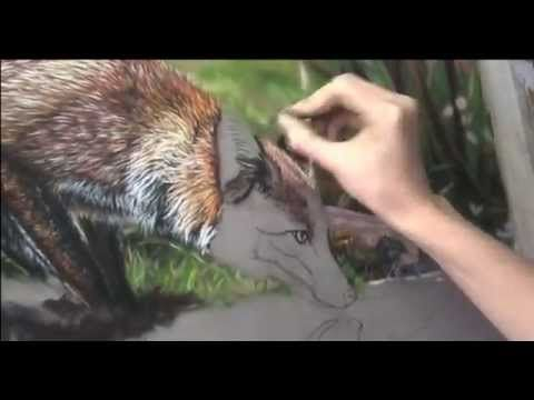 Speed painting a fox in pastels on velour - YouTube