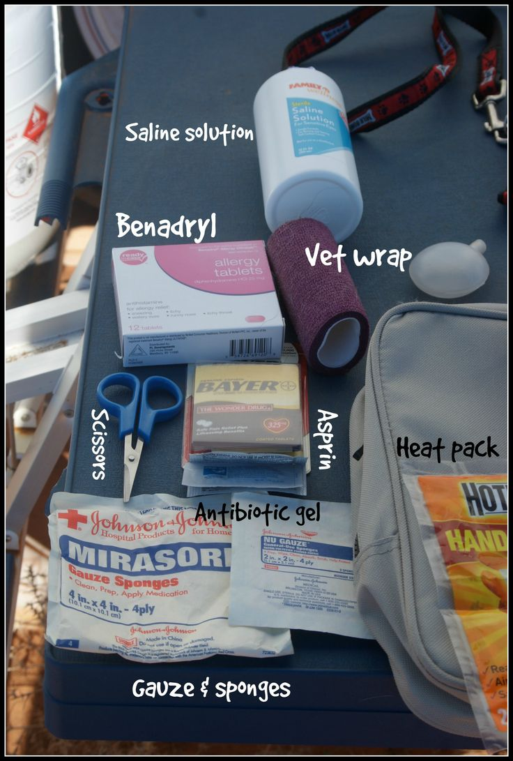 A while back, I wrote a post on making a tiny first aid kit to take along on hikes with your dog. I love that little kit, and I still take it along every time I hike.  However, I recently took a pe...
