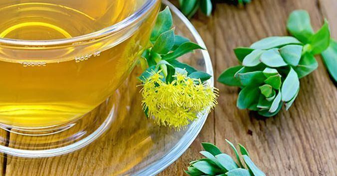 EL TÉ DE RHODIOLA (o té de rodiola) es una maravillosa bebida medicinal con increíbles beneficios y propiedades. Te explicamos en qué consiste y te comentamos cómo hacerlo en casa paso a paso.  Aunque en la actualidad tienden a ser muy populares determinadas variedades de té, como por ejemplo es el caso del té verde, el té rojo o el té blanco (por nombrar sólo las opciones más conocidas y consumidas), a lo largo del mundo podemos encontrarnos con otras maravillosas opciones en las