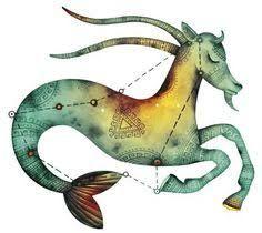 Image result for capricorn