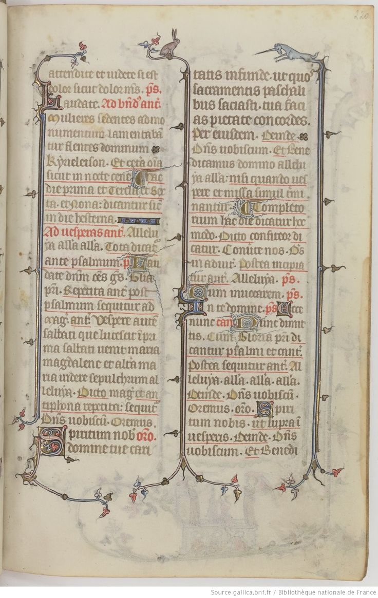page 220r