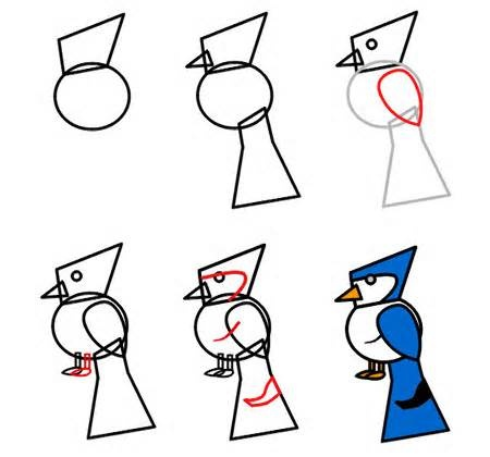How To Draw A Bird The Blue Jay Example Step 3