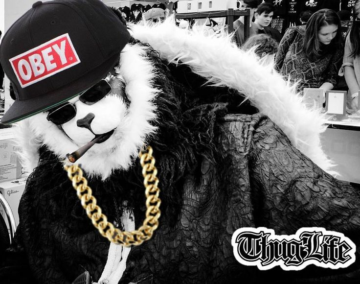 #ThugLife #WoW Chen Stormstout cosplay done right cosplay