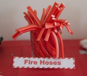 Jovial Spondoodles: Fireman Sam Party