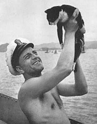 On May 27, 1941, the Bismarck was spotted by a pair of British destroyers and sunk. In total, 2,200 German soldiers were on the ship when it went down and 115 people (1 cat) survived. The surviving cat was a black and white patched cat named Unsinkable Sam (Oscar), who was discovered floating on a board by British troops. He was the only survivor found by the British destroyer HMS Cossack.