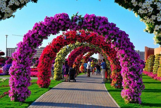 Дубай сад чудес фото дом сингапуре купить